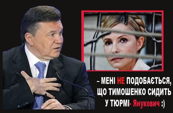 ЕС отчитал Януковича за Тимошенко: поведение неудовлетворительное - власти жонглируют и затягивают время - Цензор.НЕТ 8513