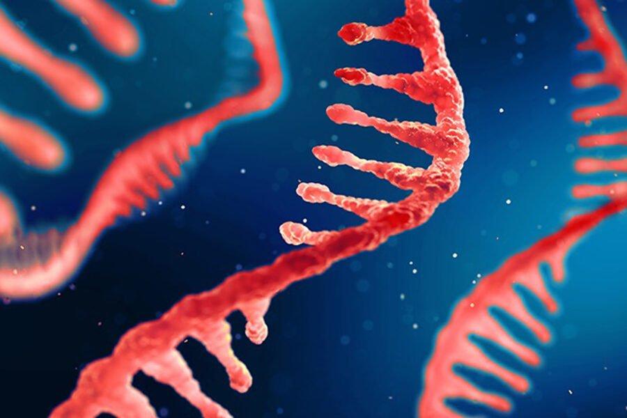 mRNA-illustration2_6502500-900x600.jpg